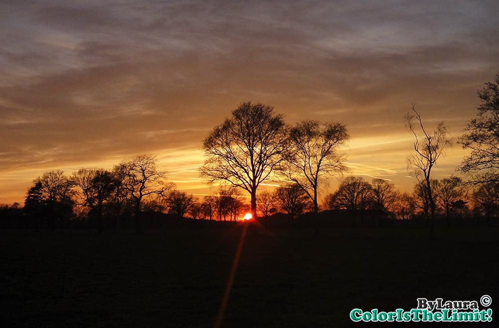 Zonsondergang in Aarle Rixtel