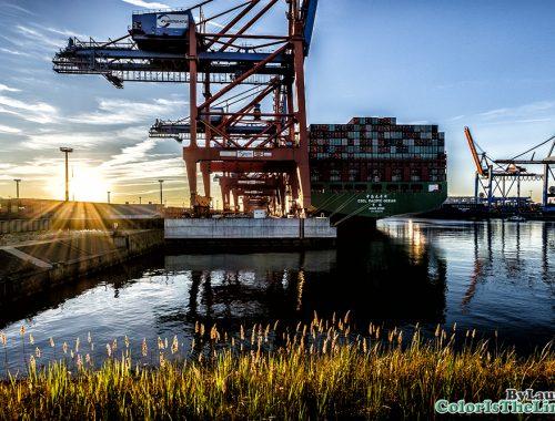 Hamburg Haven