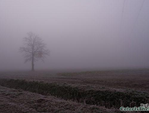 Mist Asten