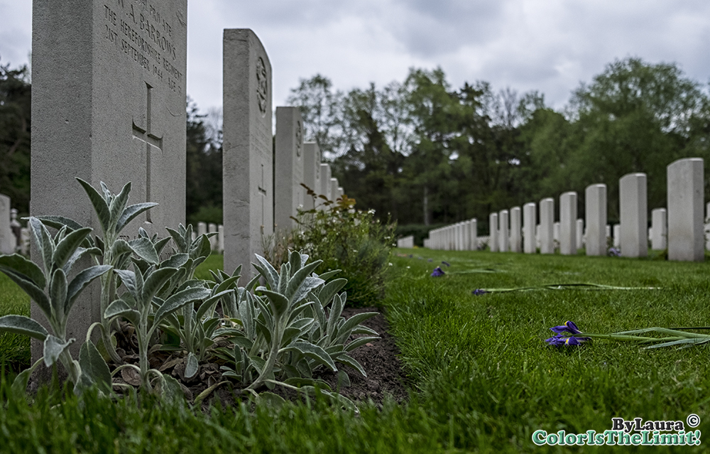 War Cemetery Mierlo