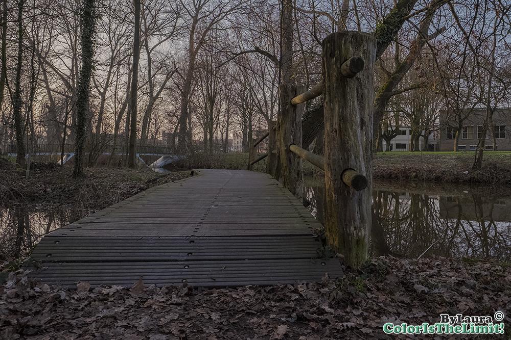 Anne Frank Plantsoen Eindhoven