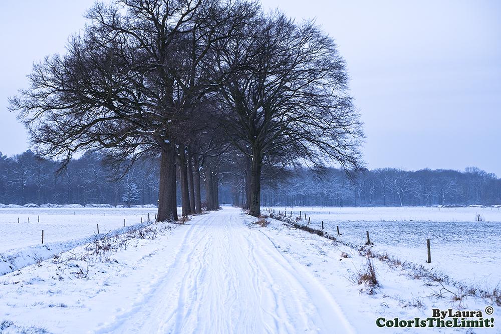 Sneeuw Goorsebaan