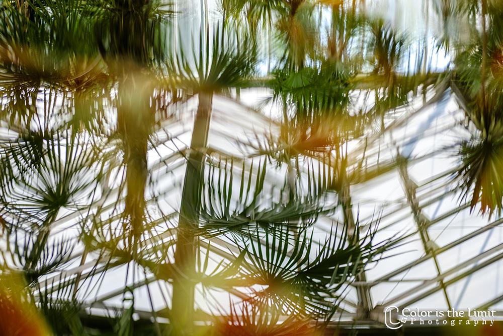 Kasteeltuinen Arcen